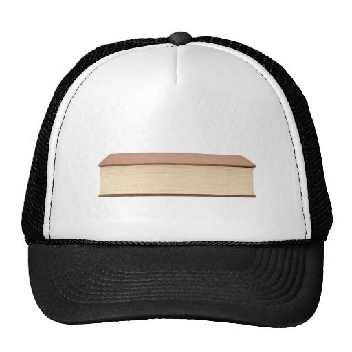 Fore edge of a book mesh hat