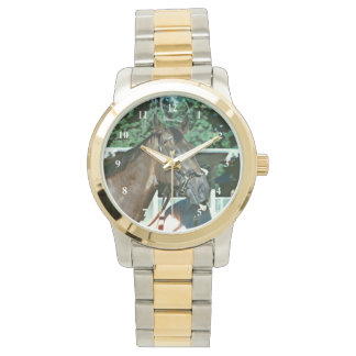 Forego Racehorse 1977 Watch
