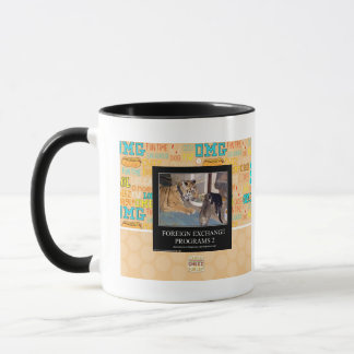 Foreign Exchange Programs 2 Mug
