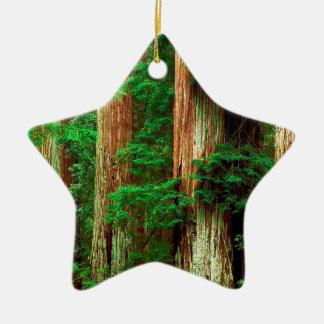 Forest Ancient Giants Big Basin Redwood Park Christmas Ornament