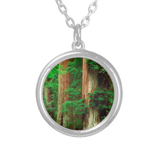 Forest Ancient Giants Big Basin Redwood Park Personalized Necklace