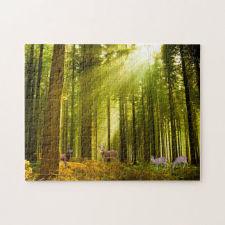 Forest and Deer image  Photo-Puzzle-with-Gift-Box Jigsaw Puzzle