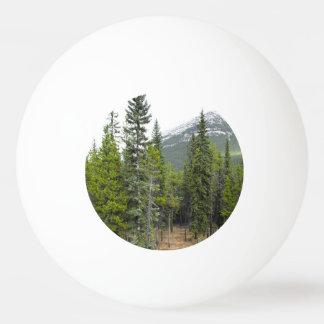 Forest and Mountain Scene Ping Pong Ball
