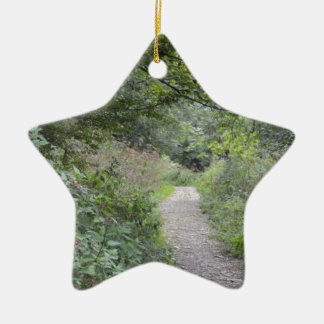 Forest and the foot path ceramic star decoration