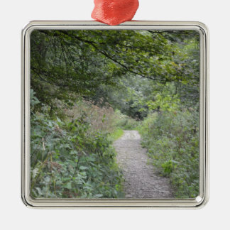 Forest and the foot path christmas ornament