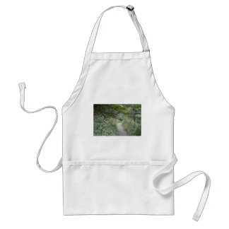 Forest and the foot path standard apron