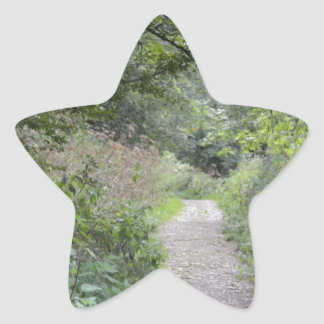 Forest and the foot path star sticker