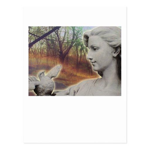 Forest Angel Postcards
