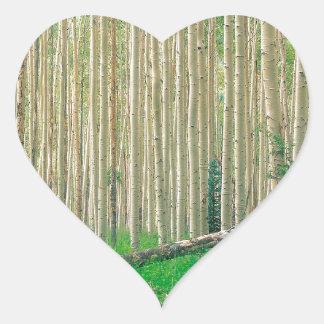 Forest Aspen Grove Independence Pass Sticker