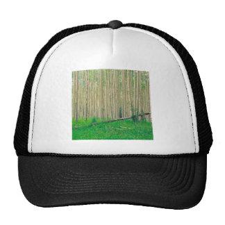 Forest Aspen Grove Independence Pass Trucker Hats
