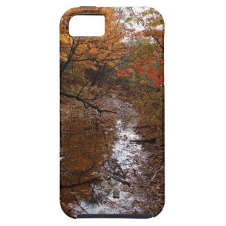FOREST AT AUTOMN WITH WATER iPhone 5 COVERS