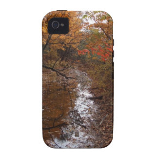 FOREST AT AUTOMN WITH WATER iPhone 4/4S COVERS