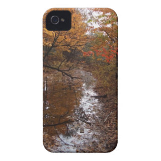 FOREST AT AUTOMN WITH WATER Case-Mate iPhone 4 CASE