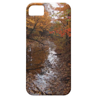 FOREST AT AUTOMN WITH WATER iPhone 5 COVER