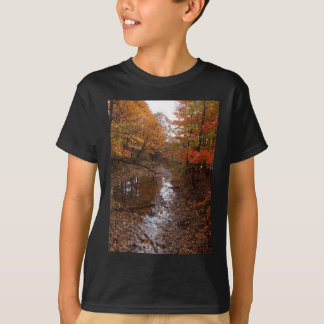 FOREST AT AUTOMN WITH WATER T-SHIRTS