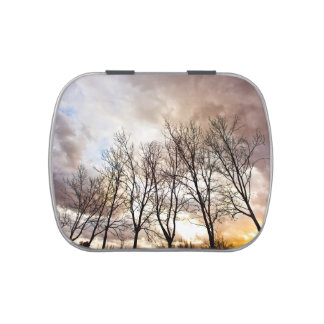 Forest AT sunset with cloudy sky Candy Tin