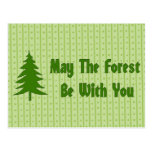 Forest Blessing Postcards