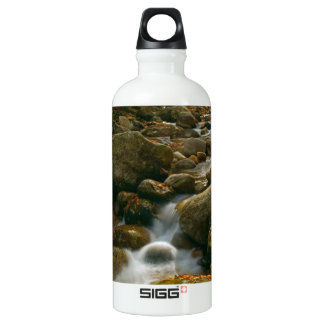 Forest Cascade Water Bottle