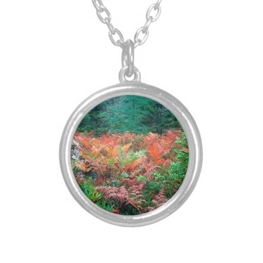 Forest Colorful Ferns In Autumn Acadia Maine Custom Jewelry