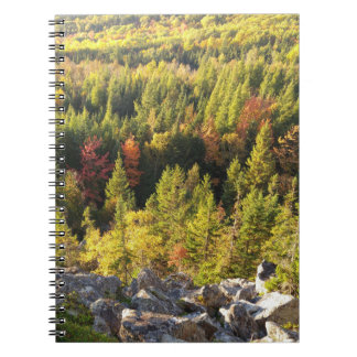 forest cover notebook