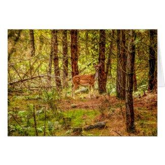 Forest Deer Card