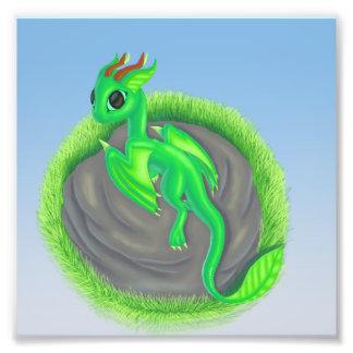 Forest dragon photo print