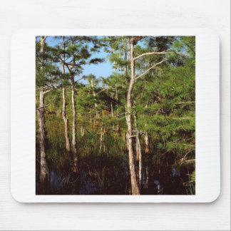 Forest Dwarf Cypress Everglades Florida Mouse Pad