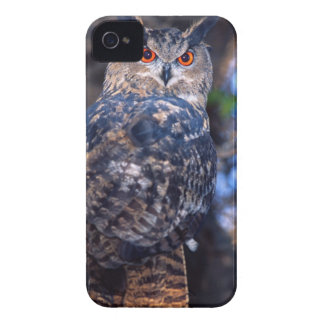 Forest Eagle Owl, Bubo bubo, Native to Eurasia 2 iPhone 4 Case-Mate Cases