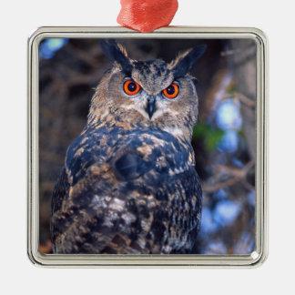 Forest Eagle Owl, Bubo bubo, Native to Eurasia 2 Christmas Ornament