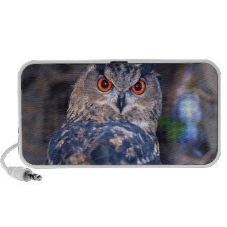 Forest Eagle Owl, Bubo bubo, Native to Eurasia 2 iPhone Speaker