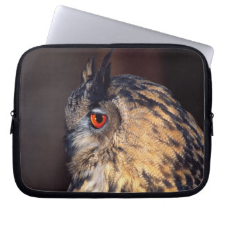 Forest Eagle Owl, Bubo bubo, Native to Eurasia Laptop Sleeve