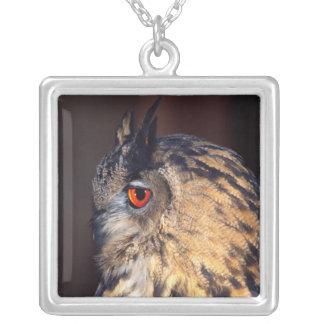 Forest Eagle Owl, Bubo bubo, Native to Eurasia Square Pendant Necklace