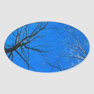 Forest East Deciduous Tennessee Oval Sticker