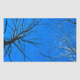 Forest East Deciduous Tennessee Rectangular Sticker