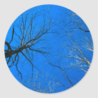 Forest East Deciduous Tennessee Round Sticker
