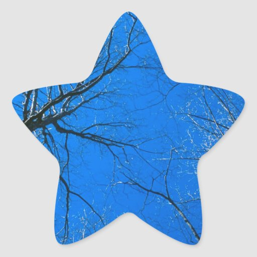 Forest East Deciduous Tennessee Star Stickers