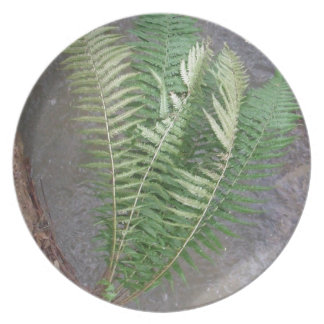 Forest Fern Over Water Plate