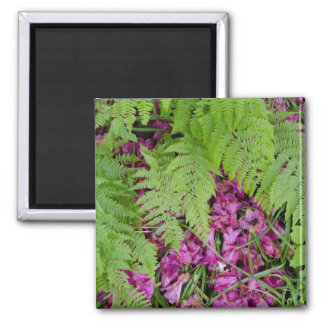 Forest ferns with pink flower petals on ground magnet