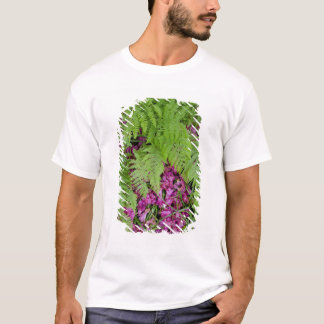 Forest ferns with pink flower petals on ground T-Shirt