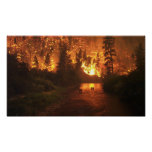 Forest Fire - Deer Poster