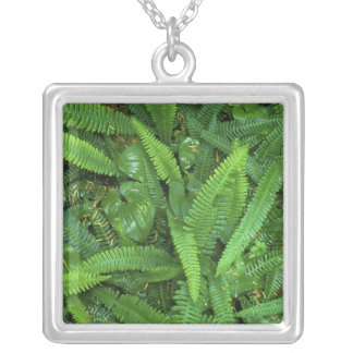 Forest Floor, Quinault Rain Forest, Olympic NP, Personalized Necklace