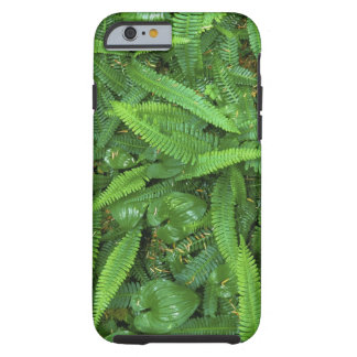 Forest Floor, Quinault Rain Forest, Olympic NP, Tough iPhone 6 Case