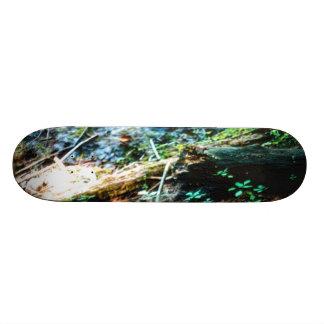 Forest Floor Skateboards