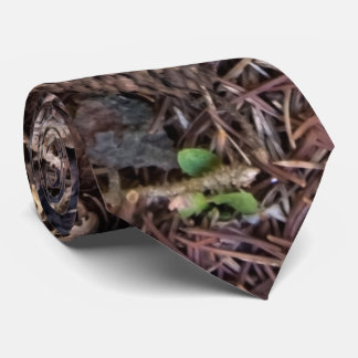 Forest Floor with Pinecones and Pine Needles Photo Tie