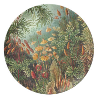 Forest Flora Plate
