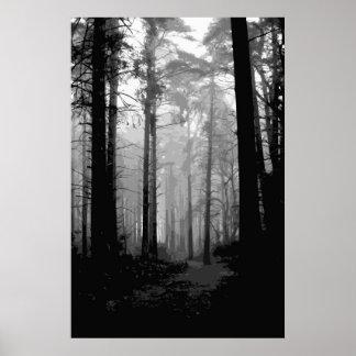 Forest fog 10 poster