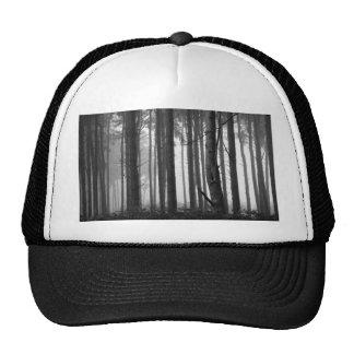 FOREST FOG 14 CAP