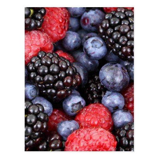 Forest Fruit Background Postcards