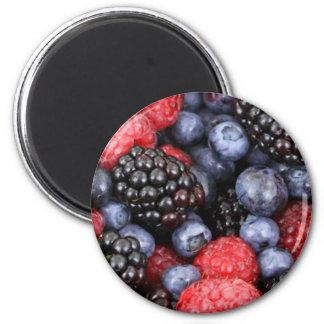 Forest Fruits Magnet