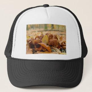Forest Fungi #1 Trucker Hat